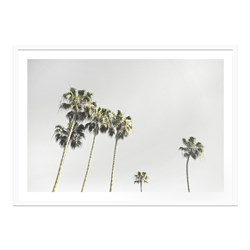 California Dreams Framed Print