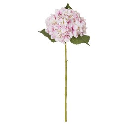 Hydrangea Stem Light Pink